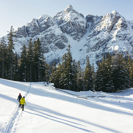 winterwandern im winterwonderland